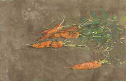Carrots on Venetian Plaster