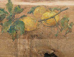 Lemons on Raw Oak
