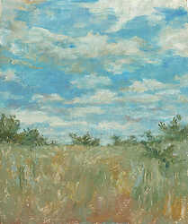 Summer Sky above Wild Grass