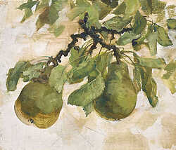 Two Pears on Twig II