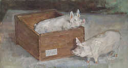 Two Pigs and Box